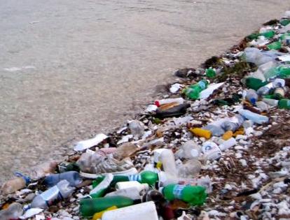 http://www.warnermemorial.org/uploads/Littered_shore.jpg