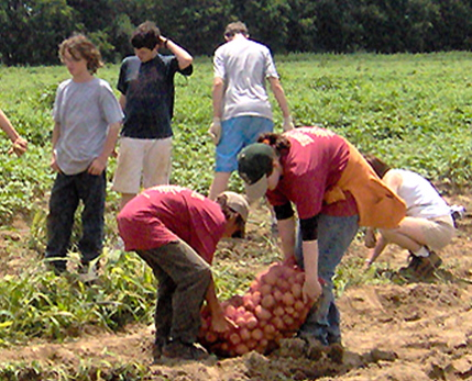 http://www.warnermemorial.org/uploads/Potato Gleaning.jpg